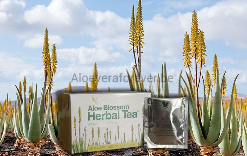 Boîte de sachets d'Aloe Blossom Herbal Tea